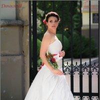 Фестиваль невест :: Григорий Осипенко
