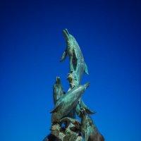 дельфины :: Sergey Bagach
