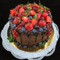 Бисквит, шоколадный бархат. :: Дмитрий Макаров