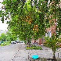 Стучится осень в дверь ко мне :: Валерий Кабаков
