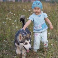 Рой растет)) :: николай постернак