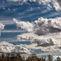 Облака :: Екатерина Бакулина