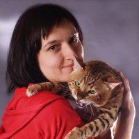 Бенгальские котята,бенгальский кот :: Наталья Сидорова
