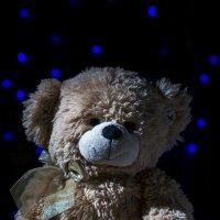 Bear :: Николай Титюк