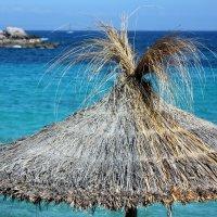 На пляже :: Ирина C
