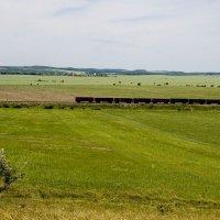 Поезд. :: Николай Сидаш