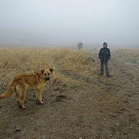 в туман :: Валерий Горбунов