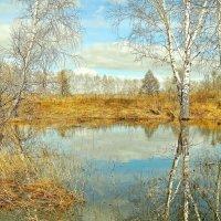 Весеннее отражение :: Владимир Зыбин