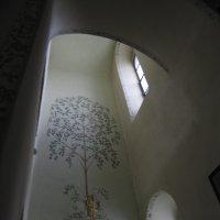 райское дерево :: Lena Zalesska