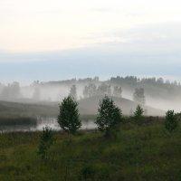 Утро туманное.. :: Ирина Васильева