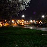 Парк возле Донбасс Арены :: Евгений Гороховатский