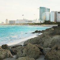 Miami beach :: Olga Vasileva