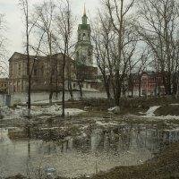 Весна на задворках. :: Валерий Молоток