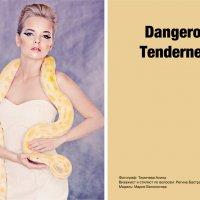 Dangerous Tenderness :: Алина Тимичева