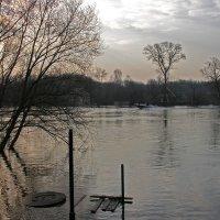 На реке Десне :: Тамара Цилиакус
