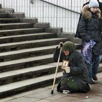 учимся состраданию......... :: Владимир Матва