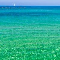 Морской пейзаж :: Lidiya Dmitrieva