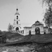 После долгой зимы :: Николай Белавин