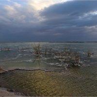 Почти зимний пейзаж.... :: Валентина Булкина