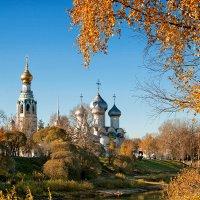 Краски прошедшей осени :: Анатолий Тимофеев