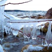 Зима начинается :: Сергей Бушуев