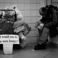 Homeless :: Olga Vasileva