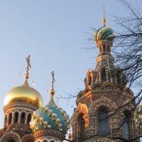 Купола храма Воскресения Христова (Спас на крови) :: Маера Урусова