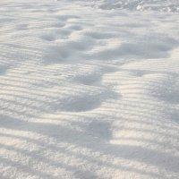 Снег за забором :: Сергей Белолипецкий