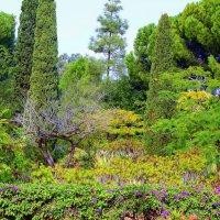 Бахайский парк в древнем городе Акко :: Владимир Сарычев