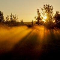 Туманное утро 3 :: Григорий Храмов