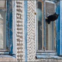 Охота на воробья :: Владимир Прынков