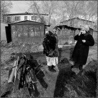 Бабушка с Дровами, Руберойдом и Шифером :: Андрей Пашис