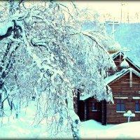Зимняя сказка. :: Анастасия Колупаева
