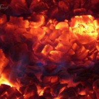 Огненный цветок :: Марина Голуб