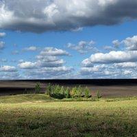 Во поле березки стояли :: галина северинова