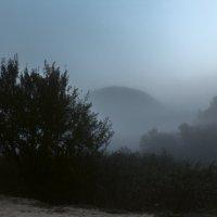 Утро туманное. :: Юрий Кущ