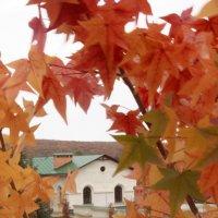 Осень в монастыре :: Анна Ипироти