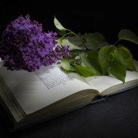поэтический........ :: Инна Сухова