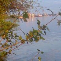 Весна над Дунаем :: Натали Жоля