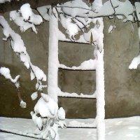 Волшебная лестница :: Натали Жоля