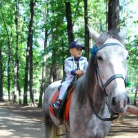 На коне :: Руслан Кай