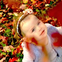 осень :: лариса краснова