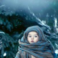 зима :: лариса краснова