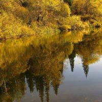 Благодатная осень :: Нина северянка