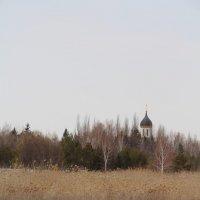 Открытки весны. Ранний апрель. :: Кристина Андриенко
