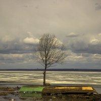 Весенняя пасмурная погода :: Aleksey Donskov