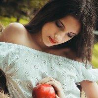 яблоки :: Ольга Степанова