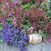 Цветы с кружкой :: Вера Щукина