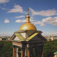 Вид с колоннады Исаакиевского собора (Санкт-Петербург) :: Павел Зюзин