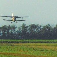 Ничего, что самолётик маленький.. лучше маленький, но свой... :: Юлия Бабитко